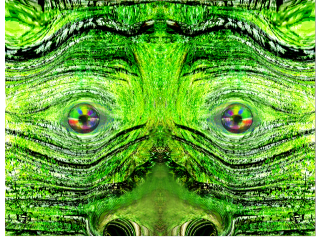 forrest face wapdistort tree nature
