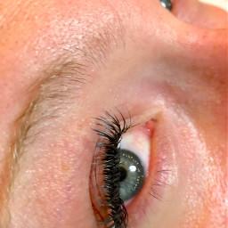 lashesbyrayanna rayannanichole seattlelashartist eyelashextension