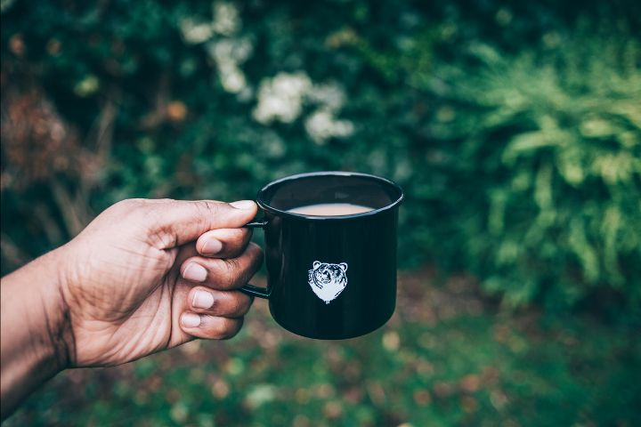 freetoedit nature leaves cup coffee