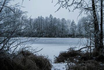 lake frozen winterwonderland