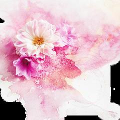 watercolour colorsplash magicselfie magicselfiesticker freetoedit